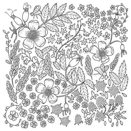 Página para colorear antiestrés para adultos. Libro de colores con flores. Ilustración de línea floral blanco y negro