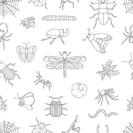 Vector seamless pattern of black and white insects. Repeat background with isolated monochrome bee, bumble bee, may-bug, fly, moth, butterfly, caterpillar, spider, ladybug, ground, stag, potato, rhinoceros beetle, dragonfly, wasp, mosquito, worm, mantis, cobweb