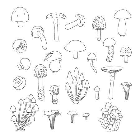 Vector set of black and white mushrooms. Collection of isolated monochrome aspen, orange-cup, champignon, chanterelle, toadstool, death cap, fungus. Food elements in cartoon style.