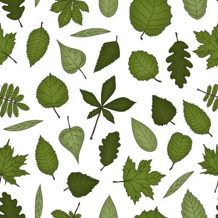 Vector seamless pattern of colored leaves. Autumn repeat background with isolated green birch, maple, oak, rowan, chestnut, hazel, linden, alder, aspen, elm, poplar, willow, walnut, ash leaves