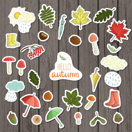 Vector set of colored autumn stickers on shabby wood background. Fall illustration of isolated leaves, umbrella, rain, mushroom, rubber boots, nut, acorn, cloud. Cartoon style
