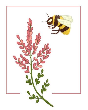 Vektorillustration des farbigen Heidekrauts mit Hummel. Helles buntes Bild der wilden Blume. Gut für organisches natürliches Design. Aquarell-Effekt. Vektorgrafik