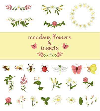 Vector set of colored wild flowers elements and insects. Collection of bee, bumblebee, dragonfly, ladybug, moth,butterfly, acacia,heather,camomile,buckwheat,clover,melilot. Vektorové ilustrace