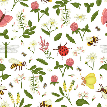 Vector seamless pattern of wild flowers, bee, bumblebee, dragonfly, ladybug, moth, butterfly. Repeating background with meadow or field insects, acacia, heather, camomile, buckwheat, clover, melilot Vettoriali