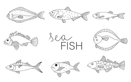 Vector black and white set of fish isolated on white background. Monochrome collection of halibut, rock-fish, mackerel, herring, flatfish, sprat, grouper, cod. Underwater illustration Ilustrace