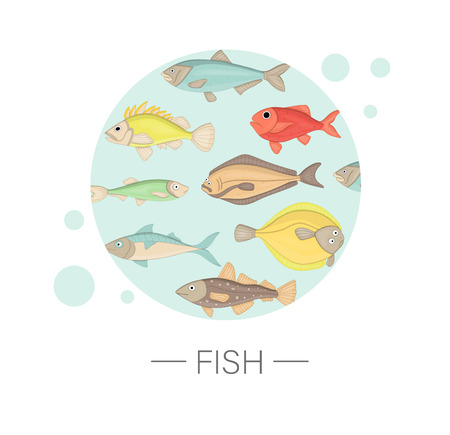 Vector  colored set of sea fish framed in blue circle isolated on white background . Colorful marine collection. Underwater illustration