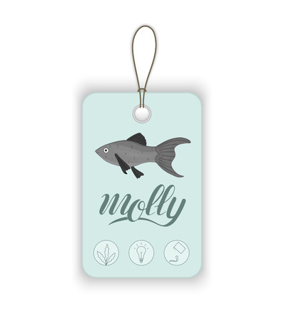 Vector price tag with aquarium fish and lettering. Illustration for pet shops. Aquarium fish names and icons. Cute molly picture Illustration