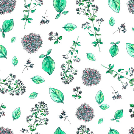 Seamless pattern with hand painted watercolor oregano isolated on white. Repeating background with herbs for textile, packaging or scrapbooking.