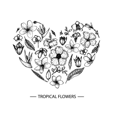 Vector tropical flowers set in a heart shape. Graphic hand drown floral illustration. Hand drawn plumeria,  canna, aloe, bougainvillea, hibiscus, protea, orchid, strelitzia isolated on white background. Sketch style tropic design elements Illustration