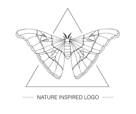 Vector hand drawn tropical atlas moth in a triangle. Tropic themed logotype for natural design. Butterfly outline isolated on white background
