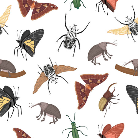 Vector seamless pattern of tropical insects. Repeat background of hand drawn colored atlas moth, weevil, butterfly, goliath, Hercules beetle, Spanish fly. Colorful cute ornament of tropic bugs.