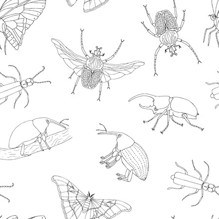 Vector seamless pattern of tropical insects. Repeat background of hand drawn outlines of atlas moth, weevil, butterfly, goliath, Hercules beetle, Spanish fly. Cute ornament of tropic bugs