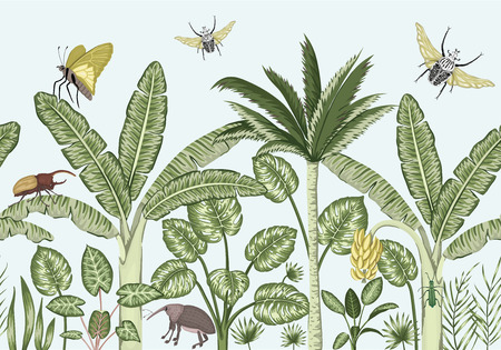 Vector seamless border background with tropical plants and insects. Vintage horizontal seamless  backdrop. Exotic jungle wallpaper
