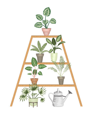 Vector illustration of tropical houseplants in pots on a stand isolated on white background. Bright realistic monstera, alocasia, dieffenbachia, cordyline. Design elements for home decoration Vektorgrafik