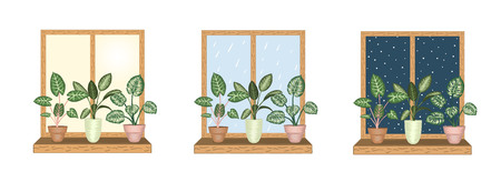 Windows with tropical houseplants in pots. Rainy,  snowy,  sunny weather views. Watercolor style. Ilustrace