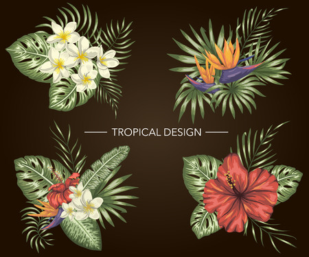 Vector set of tropical compositions with hibiscus, plumeria, strelitzia flowers, monstera and palm leaves on black background. Bright realistic watercolor style exotic design elements. Ilustração Vetorial