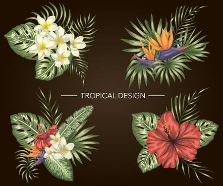 Wektor zestaw tropikalnych kompozycji z kwiatami hibiskusa, plumerii, strelitzia, monstera i palm na czarnym tle. Jasne realistyczne elementy egzotycznego projektu w stylu przypominającym akwarele. Ilustracje wektorowe