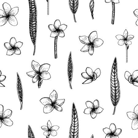 Vector seamless pattern with tropical flowers isolated on white background. Hand drawn floral background with plumeria. Floral graphic black and white repeating ornament. Tropic design elements. Line shading style Çizim