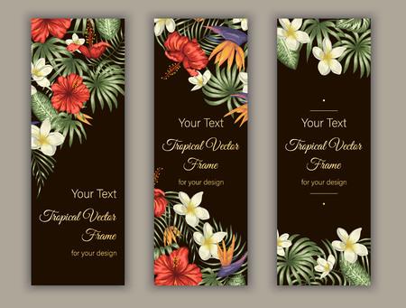Signets de vecteur avec des feuilles tropicales vertes, des fleurs de plumeria, de strelitzia et d'hibiscus sur fond noir. Modèles verticaux tropicaux d'été ou de printemps. Conception de jungle exotique à la mode Vecteurs