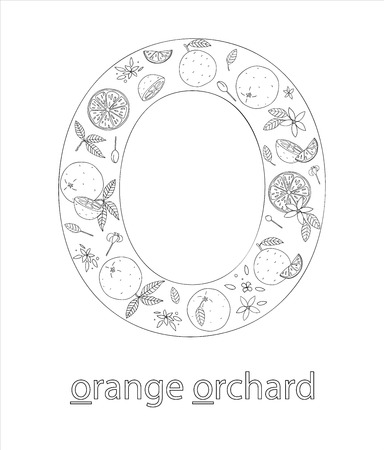 Black and white alphabet letter O. Phonics flashcard. Cute letter O for teaching reading with cartoon style oranges. Coloring page for children.