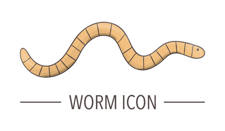 Vector colored worm icon isolated on white background. Colored cartoon style insect illustration. Bug logo Ilustração