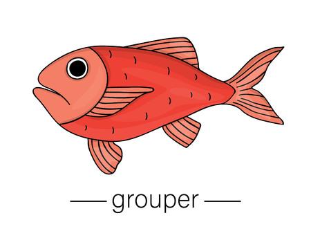 Vector colored grouper. Cartoon style sea fish icon. Underwater illustration