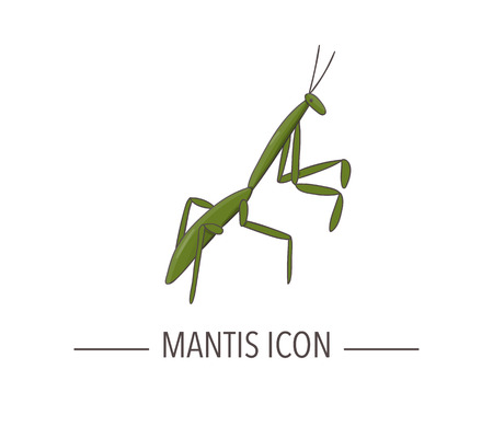 Icona di mantide colorata di vettore isolato su priorità bassa bianca. Illustrazione di insetti colorati in stile cartone animato. Logo dell'insetto