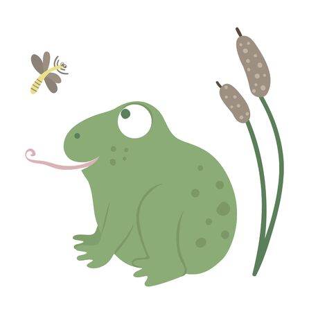 Vector cartoon style flat funny frog with reeds and mosquito isolated on white background. Cute illustration of woodland swamp animal. Sitting amphibian icon for children's design. Ilustração