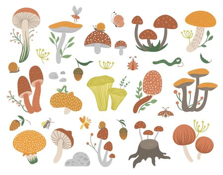 Vector set of flat funny mushrooms with berries, leaves and insects. Autumn clip art for children's design. Cute fungi illustration with acorns and cones Stock Illustratie
