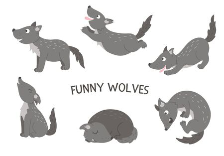 Vector set of cartoon style hand drawn flat funny wolves in different poses. Cute illustration of woodland animals for children's design.