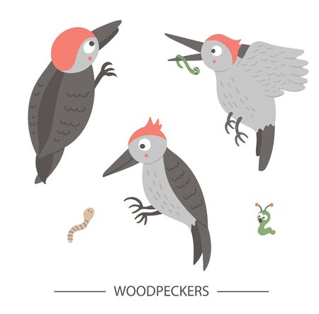 Vector set of cartoon style hand drawn flat funny woodpeckers in different poses. Cute illustration of woodland birds for children's design. Illusztráció