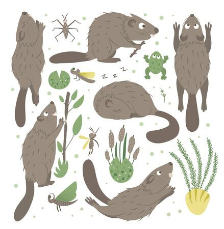 Vector set of cartoon style flat funny beaver in different poses with frog, reeds, water insects clip art. Cute illustration of woodland animals for children's design. Ilustração