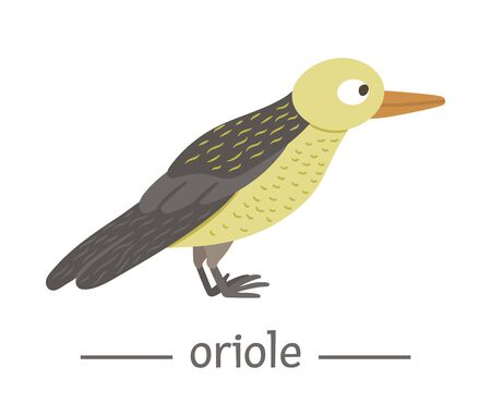 Vector hand drawn flat oriole. Funny woodland bird icon. Cute forest animalistic illustration for children's design, print, stationery