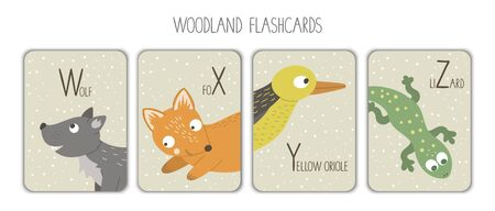 Colorful alphabet letters W, X, Y, Z. Phonics flashcard. Cute woodland themed ABC cards for teaching reading with funny wolf, fox, yellow oriole, lizard.  Иллюстрация