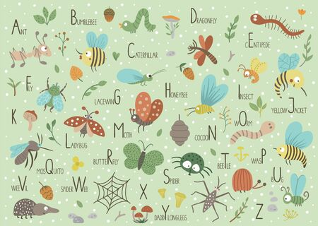 Woodland alphabet for children. Cute flat ABC with forest insects on green background. Horizontal layout funny poster for teaching reading on white background. Illustration