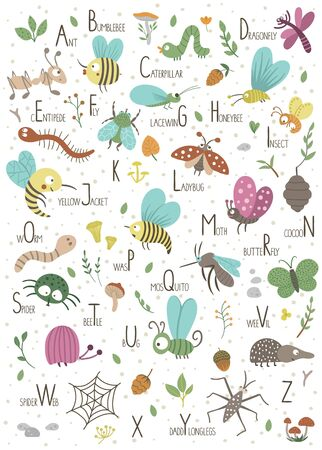 Woodland alphabet for children. Cute flat ABC with forest insects. Vertical layout funny poster for teaching reading on white background.