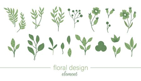 green floral clip art set. Flat trendy illustration with flowers, leaves, branches, berries. Meadow, woodland, forest, garden elements isolated on white background. Hand drawn plant elements