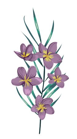 Vector illustration of colored tropical flower with palm tree branch isolated on white background. Watercolor style purple plumeria. Exotic floral detailed drawing. Tropic design element.