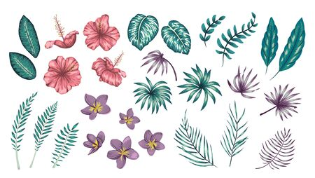 Vector set of tropical flowers and leaves isolated on white background. Bright realistic collection of exotic design elements.
