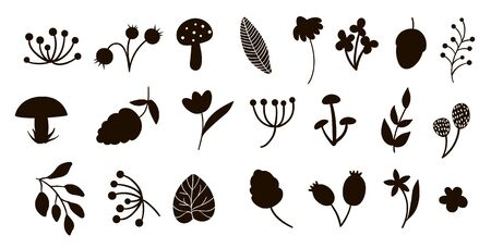 Vector forest elements silhouettes clip art set. Flat trendy illustration with leaves, branches, berries, cones, mushrooms. Woodland or forest black elements isolated on white background.   Иллюстрация