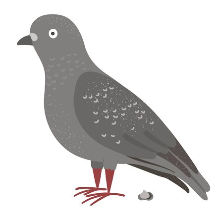 Vector illustration of funny pigeon with poo. City bird picture isolated on white background. Flat cute character clip art  イラスト・ベクター素材