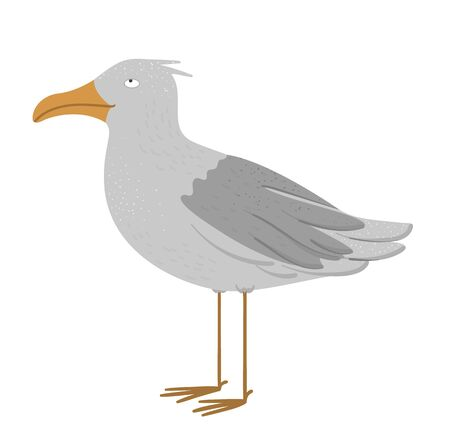 Vector illustration of funny seagull. Sea city bird picture isolated on white background. Flat cute character clip art.