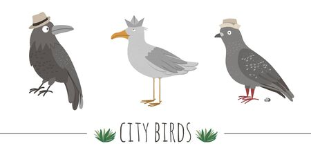 Vector illustration of funny seagull, raven, pigeon with poo. Sea or city birds in hats picture isolated on white background. Flat cute animal character clip art.