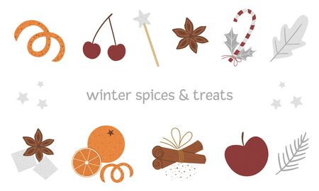 Vector set of traditional winter spices and fruit. Holiday seasonal Christmas treats isolated on white background. Cozy warming food ingredients for festive drinks