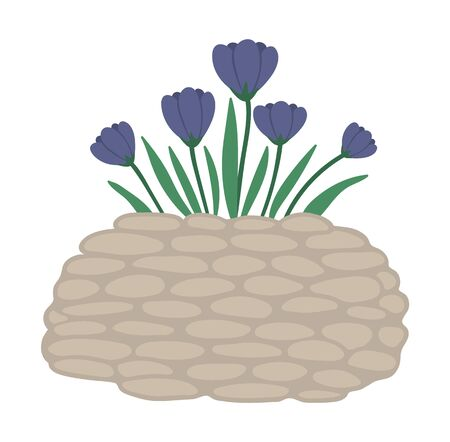 Vector illustration of flower bed. Garden decorative stone flowerbed with crocus. Beautiful spring and summer herbs, plants and flowers.  Ilustração