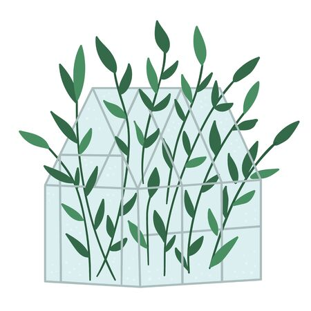 Vector greenhouse with green plants. Flat hot house illustration isolated on white background. Side view greenroom picture. Spring garden illustration.