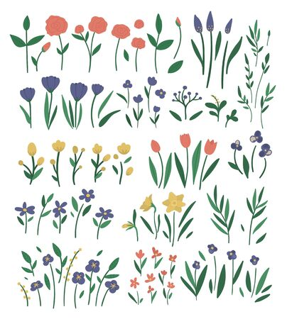 Big vector set of different flower elements. Garden decorative plants illustration. Collection of separate beautiful spring and summer herbs and flowers.