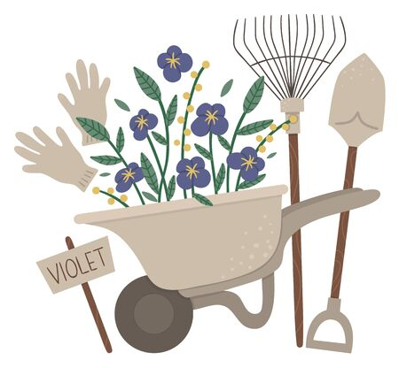 Vector illustration of colorful garden wheel barrow with violet flowers, rakes, spade, gloves. Cartoon style spring or summer picture isolated on white background. Gardening themed concept.