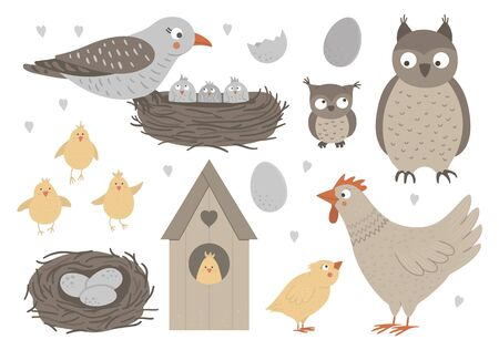 Vector set of hand drawn flat baby birds with parents, nests, eggs. Funny woodland animal scene showing family love. Cute forest animalistic illustration for Mother's Day design