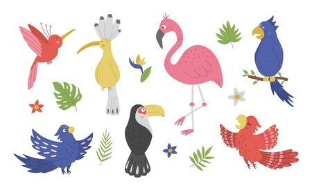 Vector set with cute exotic birds, leaves, flowers isolated on white background. Funny tropical animals and plants illustration. Bright flat picture for children. Jungle summer clip art  イラスト・ベクター素材